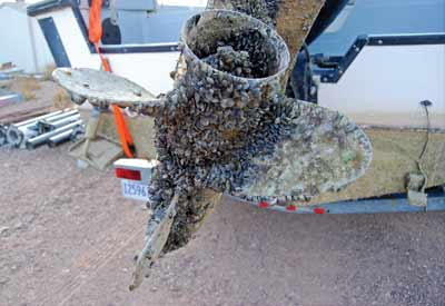 a propeller covered in zebra mussels